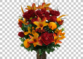 花卉剪贴画背景,非洲菊,花盆,植物,橙色,插花,黄色,出生花,花环,