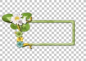背景花框架,草,绿色,黄色,植物群,相框,矩形,相框,植物,传粉者,切