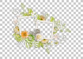 背景黄色框架,相框,花卉,插花,黄色,植物群,植物,蝎子草,花瓣,花