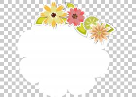 花卉背景,花卉,黛西,植物群,线路,大丽花,插花,雏菊家庭,植物,向
