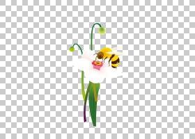 花卉背景,花卉设计,线路,绿色,花,黄色,花瓣,植物群,植物,蜂王,花