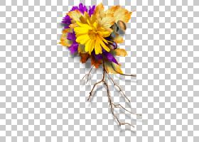 绿叶背景,插花,切花,花卉,植物,绿色,花束,黄色,颜色,分支,菊花,