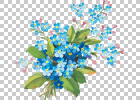 婚礼花卉背景,花卉设计,分支,琉璃苣家族,植物群,别忘了我,花瓣,