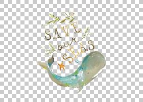 海龟背景,文本,凯蒂・黛西,海湾,白鲸,水生动物,水,水生生态系统,图片