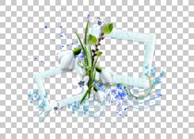 蓝花框,花卉设计,线路,插花,分支,植物群,花瓣,植物,文本,花,蓝色