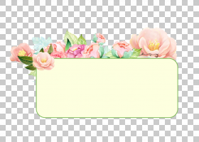 蓝花框,贺卡,植物,矩形,玫瑰家族,花卉,相框,桃子,插花,粉红色的