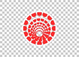 红花,花,花瓣,面积,线路,圆,红色,墨西哥,技术,研究所,制度,存储
