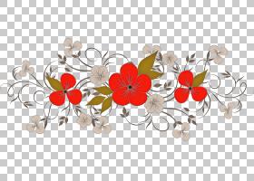 花边花背景,Coquelicot,野花,花瓣,植物,花,红色,花卉背景,花边,