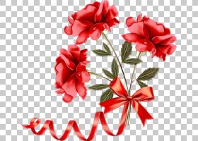 红花花瓣植物切花,粉红色家庭,康乃馨,胭脂红,切花,植物,花瓣,花,
