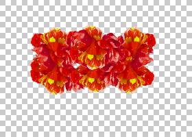 花卉剪贴画背景,草本植物,橙色,牡丹牡丹,花瓣,颜色,牡丹,花,红色