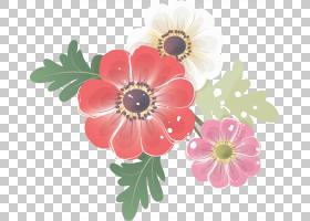 花卉剪贴画背景,非洲菊,一年生植物,插花,人造花,花卉设计,雏菊家