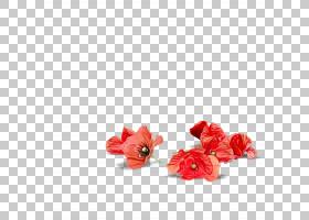 人造花,人造花,切花,芙蓉,橙色,植物,花瓣,粉红色,花,红色,湿墨水