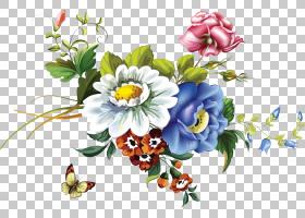 花卉剪贴画背景,草本植物,花卉,花束,插花,切花,植物群,一年生植