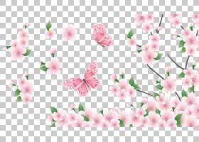 春花,樱花,花卉设计,分支,植物群,传粉者,花瓣,植物,蝴蝶,粉红色,
