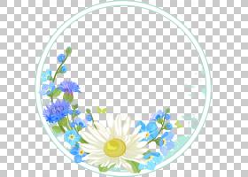 花卉剪贴画背景,餐具,切花,圆,黛西,黄色,植物群,花瓣,主题,花卉