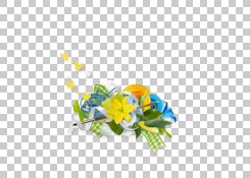 春花,插花,花卉,黄色,植物群,春天,AR Rahiim,巴斯马拉,植物,花瓣