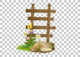 绿草背景,草,植物,资源,楼梯,花,Albom,梯子,