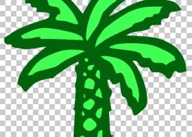 椰叶提取,草,花,线路,植物茎,植物群,木本植物,植物,叶,绿色,剪影