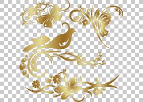 黑白花,机翼,飞蛾与蝴蝶,传粉者,植物群,视觉艺术,黑白,花卉设计,