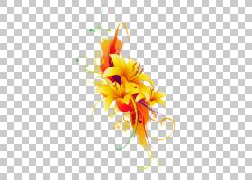 黑白花,花瓣,切花,植物,橙色,红色,蓝色,黑色,白色,黄色,莉莉,花,
