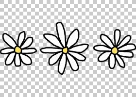 黑白花,黑白,线路,切花,黄色,传粉者,符号,花瓣,对称性,植物群,植
