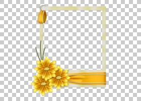 蓝花框,矩形,花瓣,花卉设计,切花,相框,销,帕佩尔・德・卡塔,白色