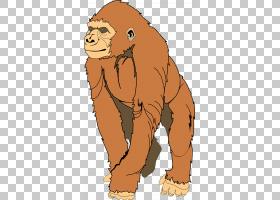行星卡通,卡通,大猿,口吻,熊,野生动物,人猿星球,猴子,大熊猫,大