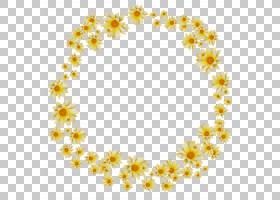 黄色背景框,圆,线路,黛西,花卉设计,身体首饰,花瓣,点,文本,花,黄