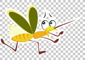 黄花,传粉者,昆虫,叶,喙,花,黄色,卡通,吸血蚊子,蚊子,