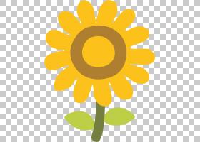 表情贴纸,雏菊家庭,野花,洋甘菊,花瓣,植物,黄色,向日葵,贴纸,花,