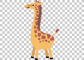 长颈鹿卡通,动物形象,长颈鹿,橙色,长颈鹿,黄色,北方长颈鹿,