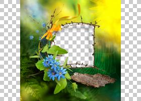 静物架,草,野花,分支,花,黄色,静物摄影,花瓣,植物群,植物,创造力