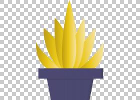 黄花植物花瓣睡莲,多年生植物,徽标,室内植物,水百合,花瓣,植物,