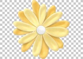 花卉背景,材质,黄色,地图,粉色,模板,人造花,花卉设计,花瓣,绘图,图片