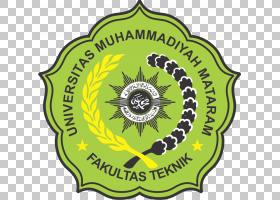 绿花,树,标签,符号,徽标,花,黄色,绿色,马塔兰,组织,高等教育,教图片