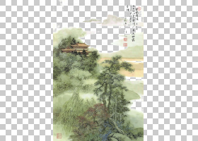 树木水彩画,草,植物,树,生态系统,水彩画,李毅,李白,作家,作者,觉图片