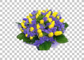 花卉背景,草本植物,一年生植物,插花,紫罗兰,紫菀,紫罗兰家族,植