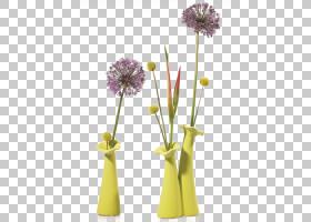 花卉剪贴画背景,插花,花盆,花瓣,花束,花卉,花,切花,蒲公英,黄色,图片