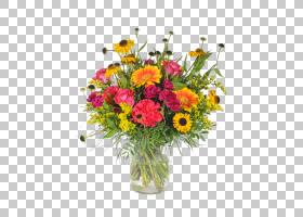 花卉背景,雏菊家庭,人造花,野花,一年生植物,非洲菊,花瓶,花盆,植