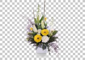 花卉背景,非洲菊,花盆,插花,中心件,植物,黄色,插花,花卉,野花,德