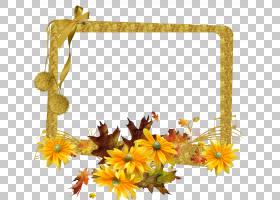 花卉背景框,黄色,向日葵,相框,植物,相框,普通向日葵,花瓣,植物群