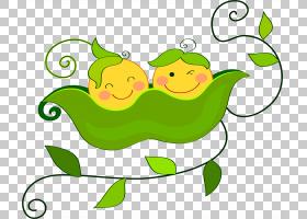绿草背景,草,绿色,线路,水果,食物,植物,树蛙,微笑,青蛙,面积,叶,图片