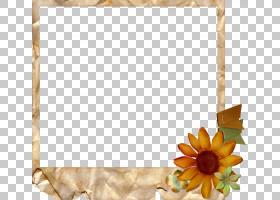 花卉设计框架,矩形,花卉设计,插花,黄色,花瓣,向日葵,相框,花,Wor