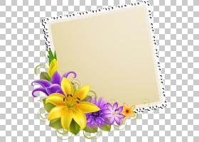 百合花卡通,纸制品,植物,紫罗兰,紫色,莉莉,贺卡,菊花,玫瑰,切花,