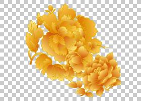 花卉设计金,花卉设计,橙色,素食,水果,插花,黄色,花瓣,食物,花,创