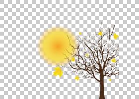 秋树剪影,花卉设计,细枝,花,黄色,植物群,植物,火灾,雪滴,秋季,剪