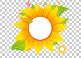 花圈,雏菊家庭,轮子,圆,花瓣,植物,黄色,向日葵,绘画,花,普通向日