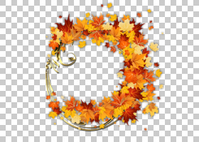 秋花,装饰,花卉设计,花瓣,橙色,花,黄色,文本,绘画,叶,相框,秋季,