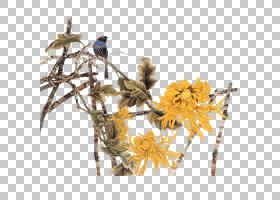花卉剪贴画背景,花卉设计,细枝,切花,分支,树,3D计算机图形学,软