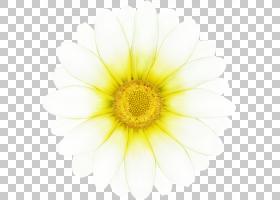 向日葵卡通,非洲菊,黛西,向日葵,关门,植物,计算机,黄色,花粉,花